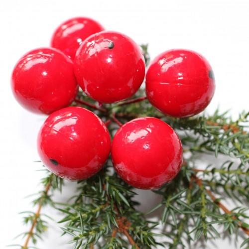 rote Kirschen Pick 6er Bund 25mm