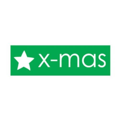10 Xmas Star Sticker Etiketten grün weiss