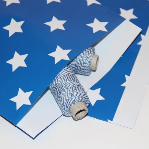 10 Papiertüten Stern blau gross