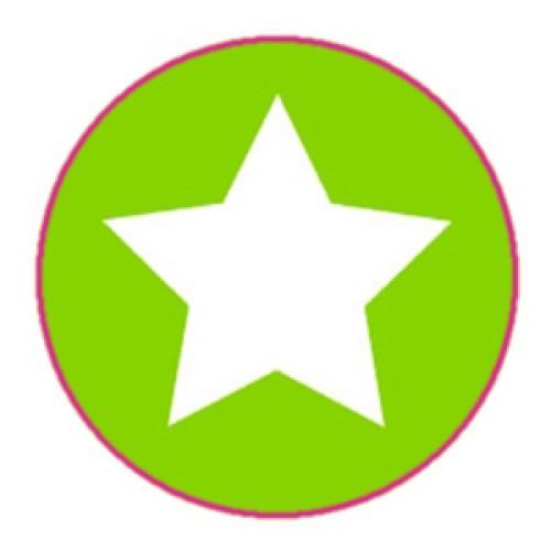 10 Stern Sticker Etiketten hellgrün weiss