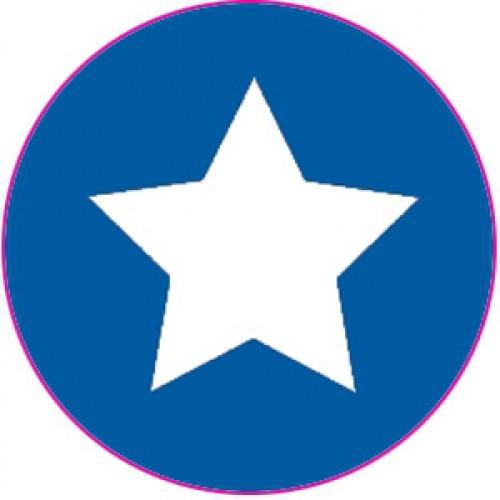 10 Sterne Sticker Etiketten blau weiss