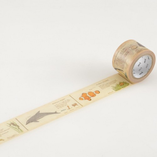 Masking Tape encyclopedia marine creatures Meerestiere