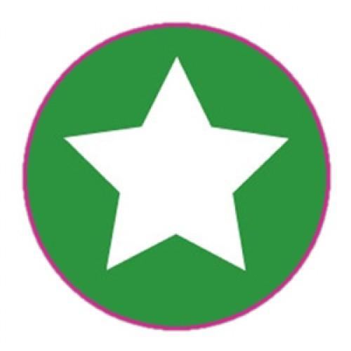 10 Stern Sticker Etiketten dunkel-grün weiss