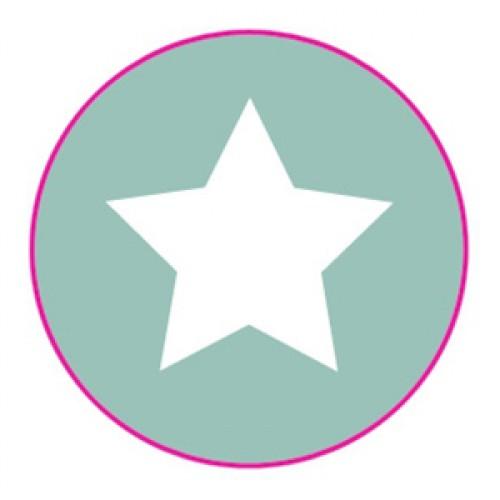 10 Stern Sticker Etiketten mint weiss