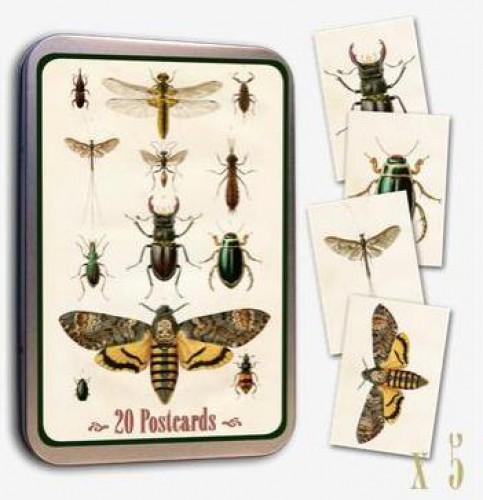 Vintage Postcards Insekten 20 Stk
